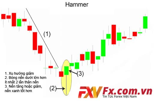 Mô hình nến Hammer (nến búa)