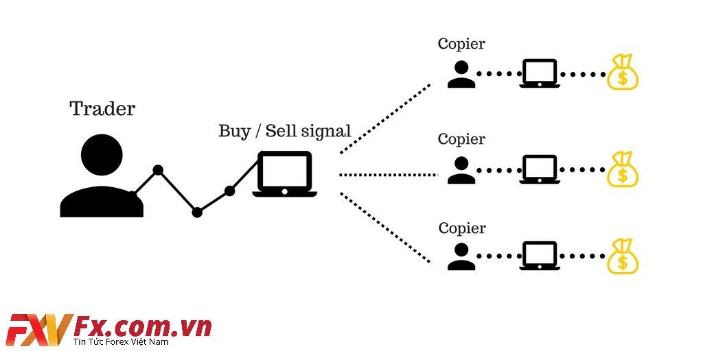 Copy trade là gì? Trade in là gì?