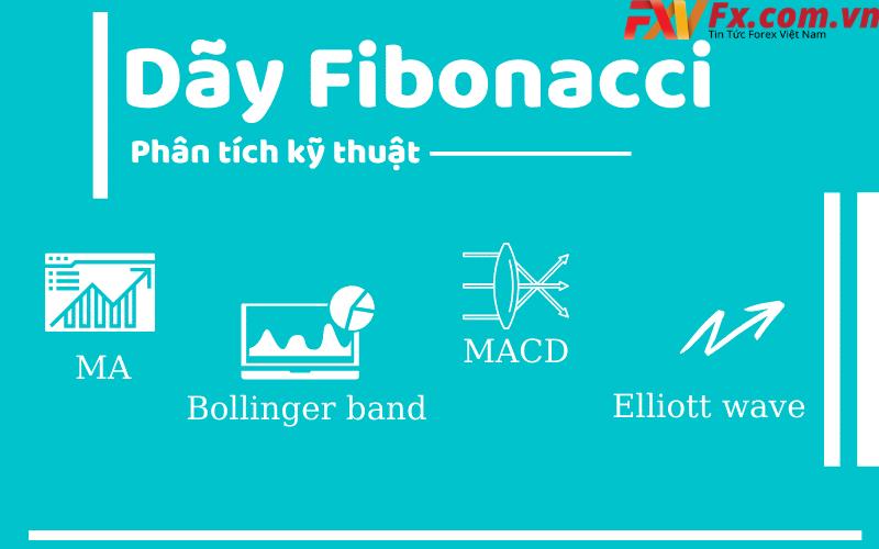 Cách vẽ dãy fibonacci