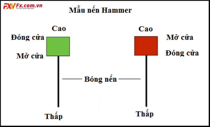 Các mẫu hình nến đảo chiều Hammer luôn có mặt trong 12 mô hình nến đảo chiều phổ biến hiện nay