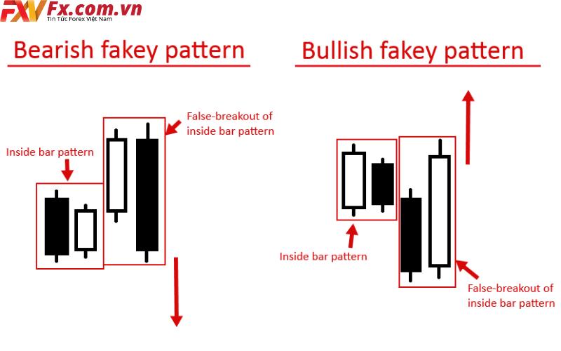Phân loại mô hình Fakey
