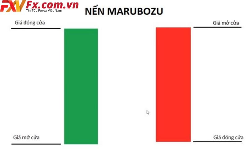 Vai trò của nến Marubozu