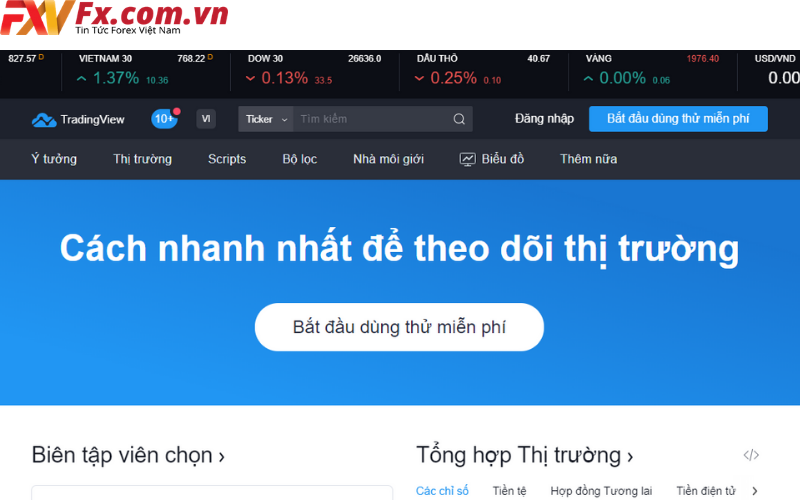 vn tradingview