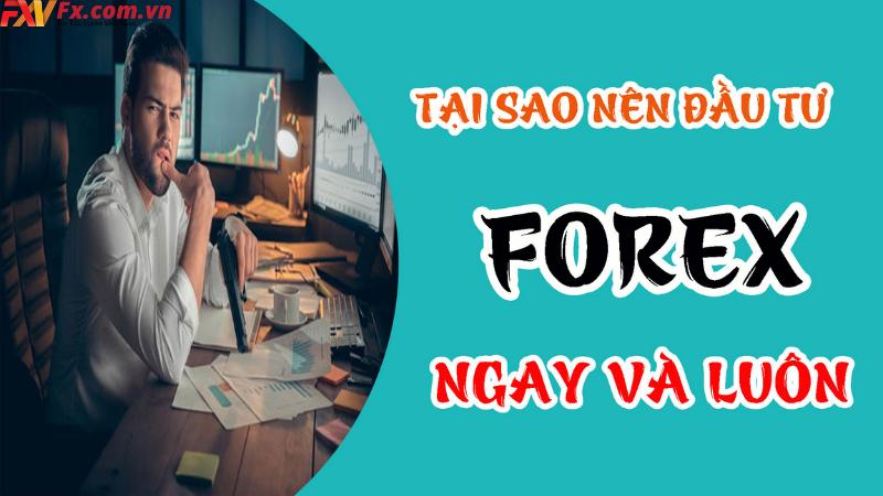 Có nên chơi Forex hay không?