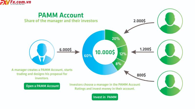 Quỹ MAM là gì Cách giao dịch với nó như thế nào