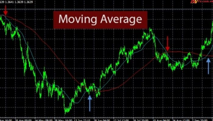 Cách sử dụng đường Moving Average