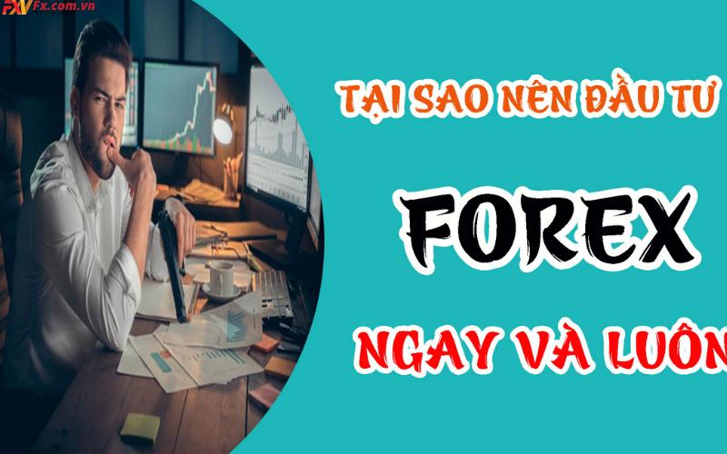 Có nên đầu tư ngoại hối Forex