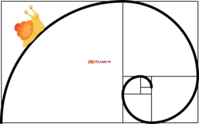 Tỷ lệ vàng Fibonacci trong Forex