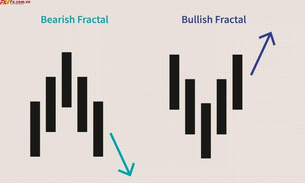 Tìm hiểu khái niệm Fractals là gì?