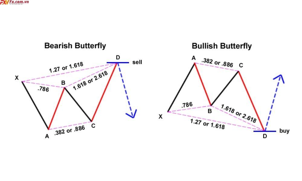 Tìm hiểu về mô hình Butterfly