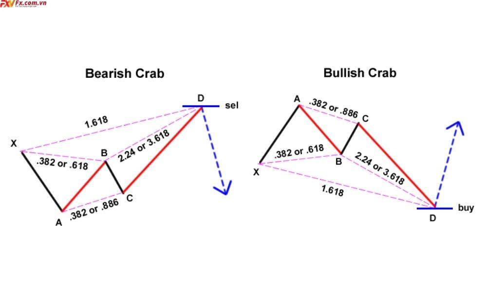 Tìm hiểu về mô hình Crab