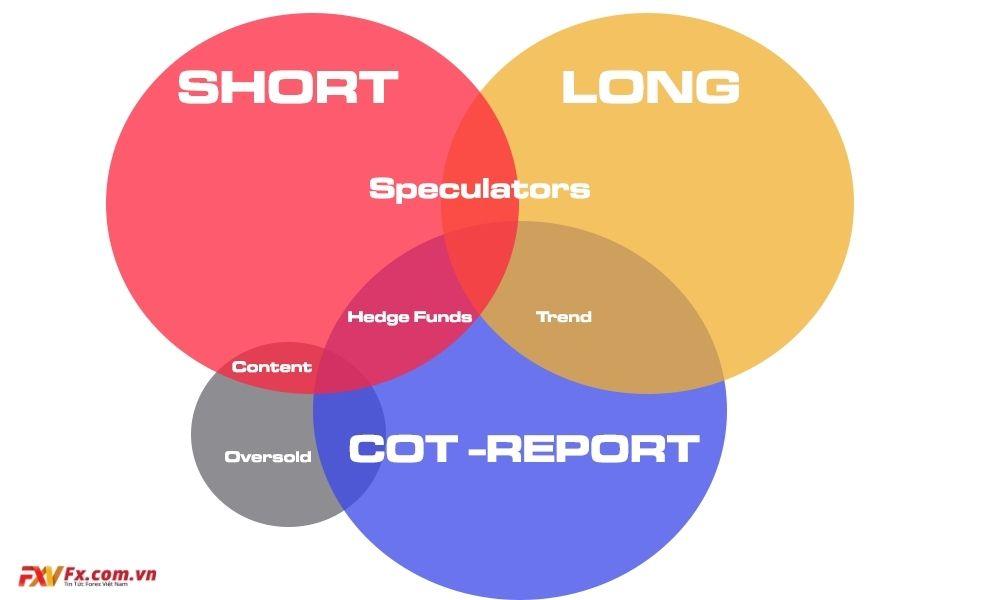 Báo cáo COT trong thị trường Forex