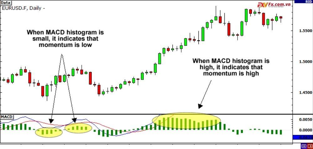 Cách đo lường sức mạnh của một xu hướng nhờ MACD
