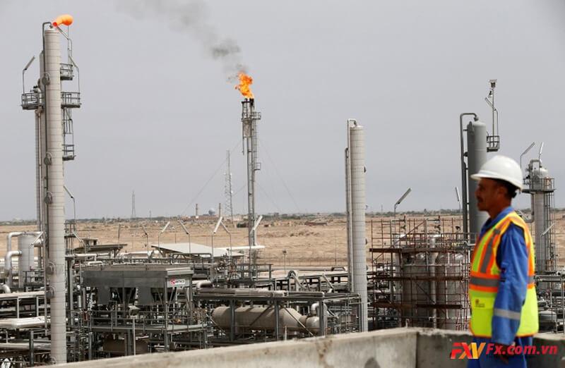 Ngành dầu mỏ đã phục hồi lại được sự sống của mình trong tháng 11