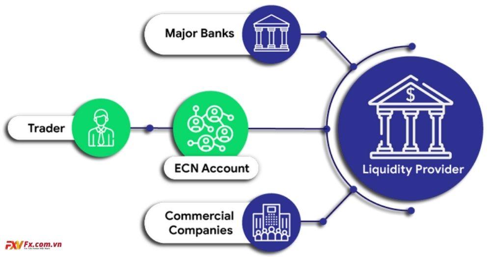 Phân loại nhà môi giới - Nhà môi giới ECN