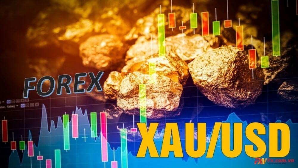Tại sao nên đầu tư vào vàng?