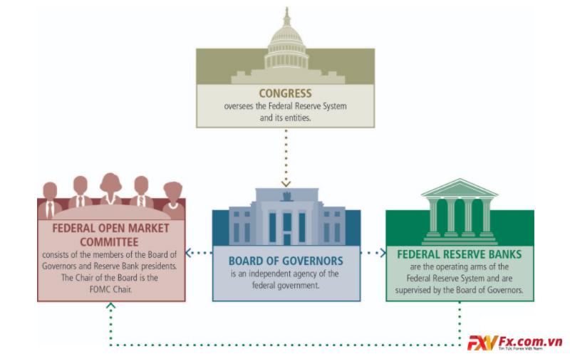 Fed là gì? - Cơ cấu tổ chức của Cục dự trữ Liên bang