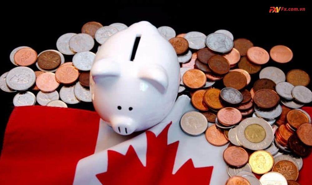 Chính sách tài chính và tiền tệ của Canada
