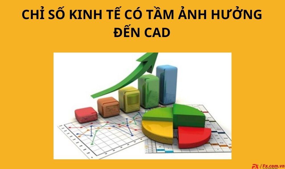 Chỉ số kinh tế có tầm ảnh hưởng đối với CAD