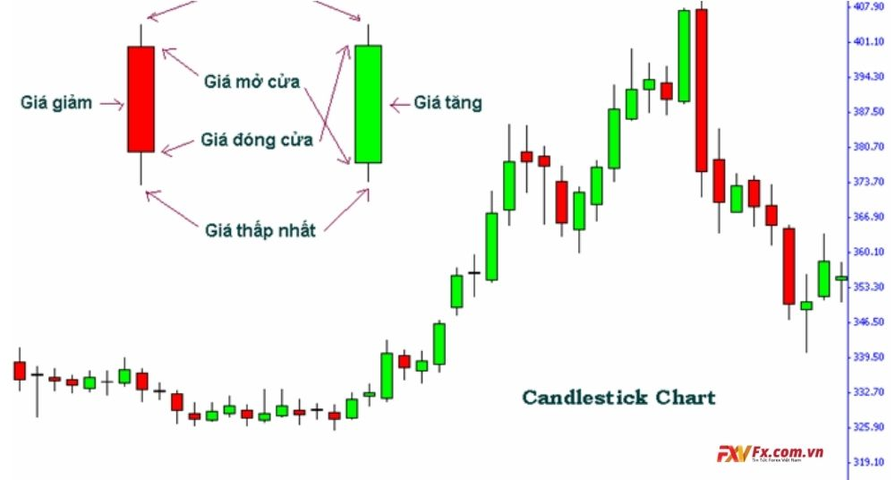 Những loại biểu đồ cơ bản nhất trong thị trường tài chính