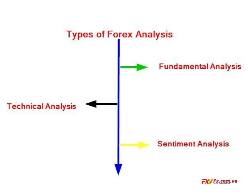 Những loại phân tích phổ biến nhất đối với lĩnh vực Forex