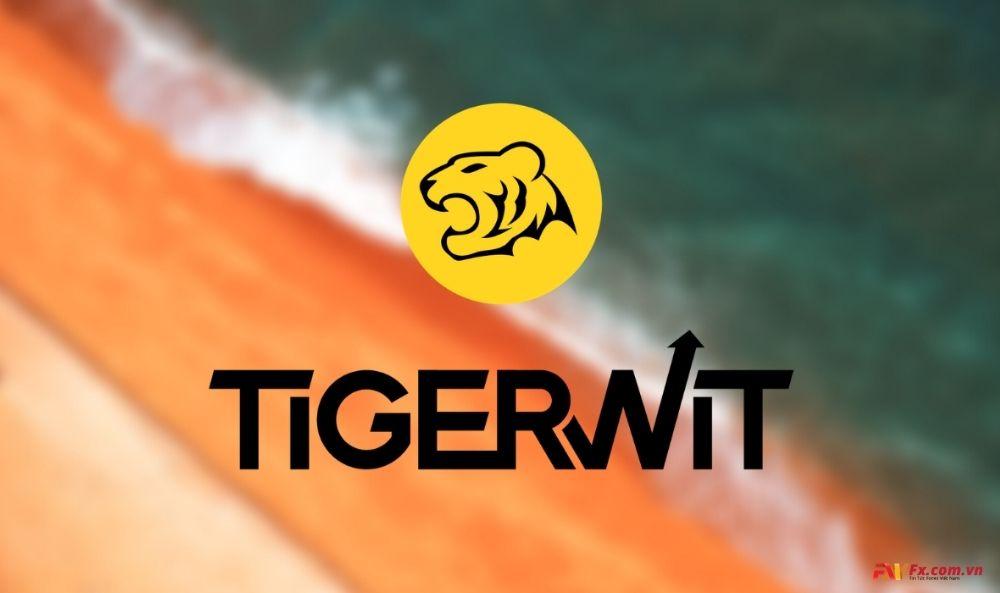 Tìm hiểu sàn TigerWit là gì?
