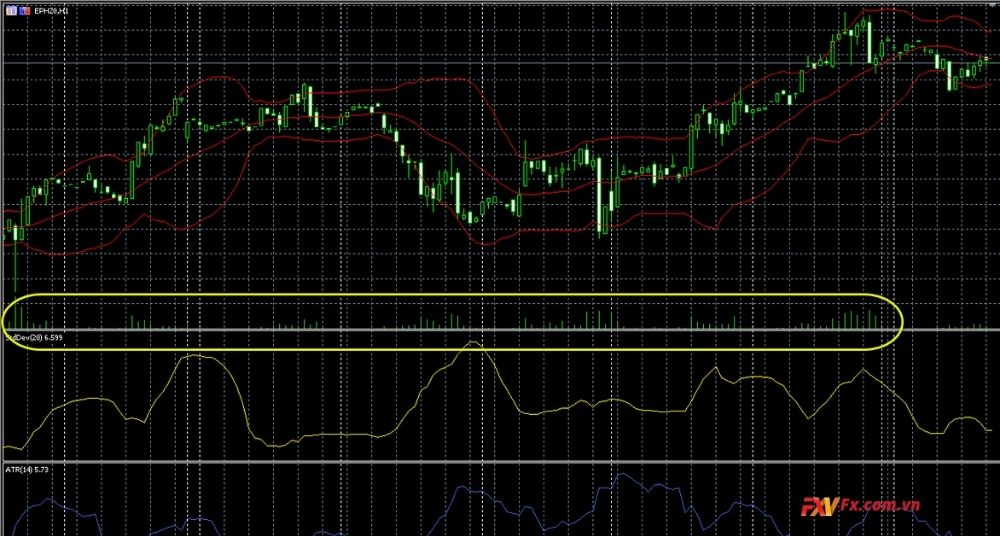 Tick Charts trong Forex