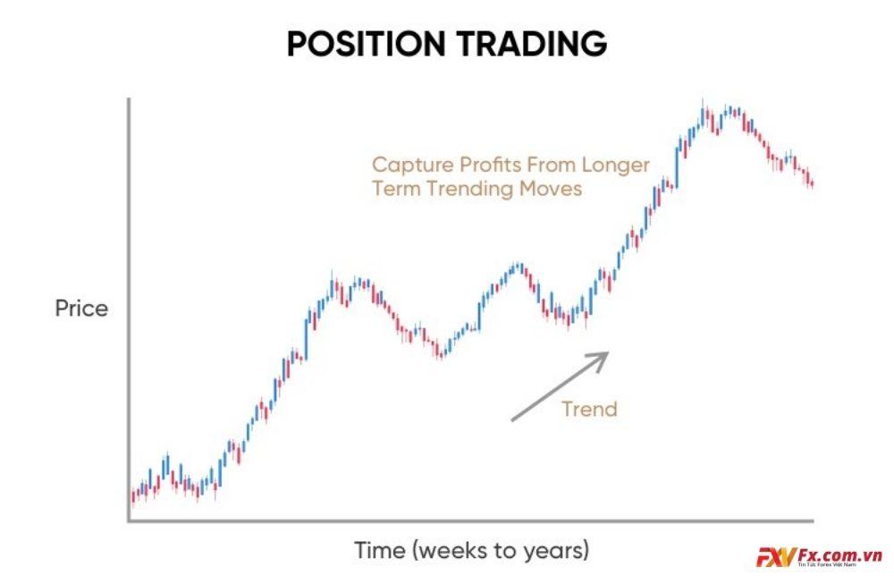 Đặc điểm của nhà giao dịch Position