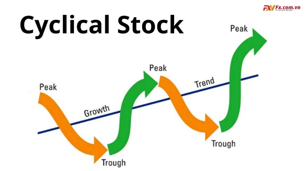 Cách so sánh cổ phần và cổ phiếu