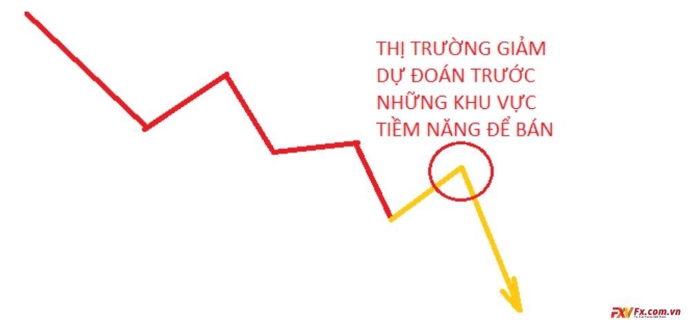 Nơi giao dịch tiềm năng là nơi đáng tin cậy