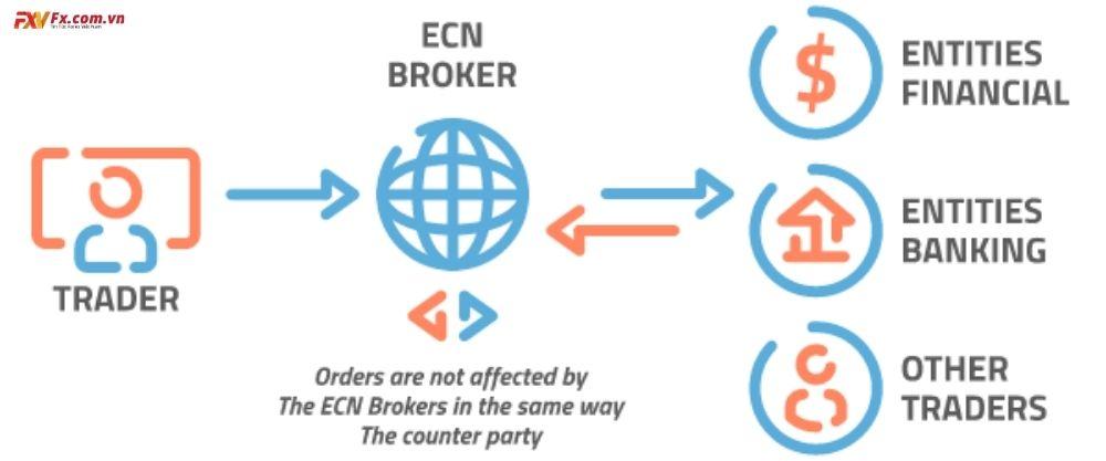 Sàn ECN là gì? Có lợi ích gì cho nhà giao dịch?