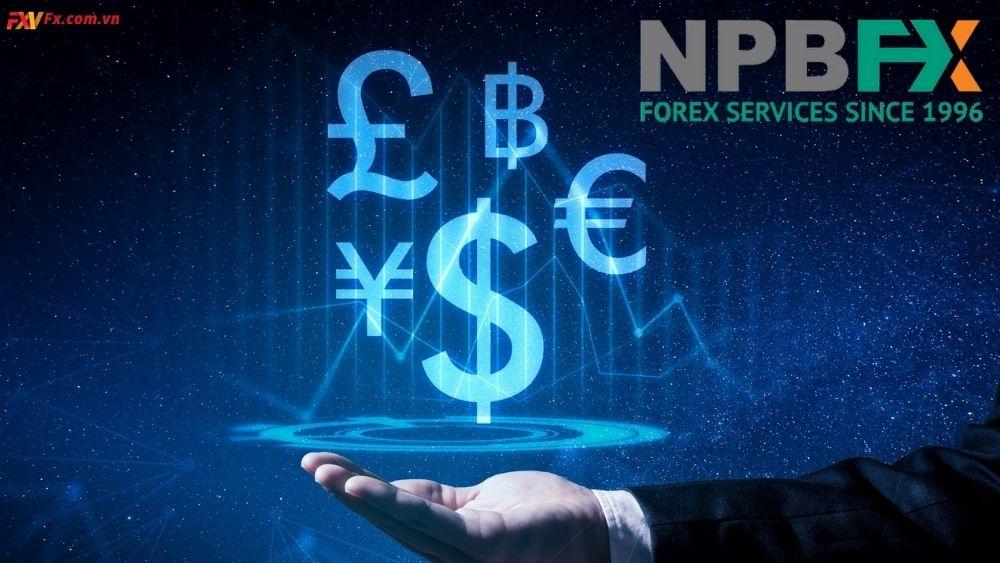 Tìm hiểu những thông tin về sàn giao dịch NPBFX