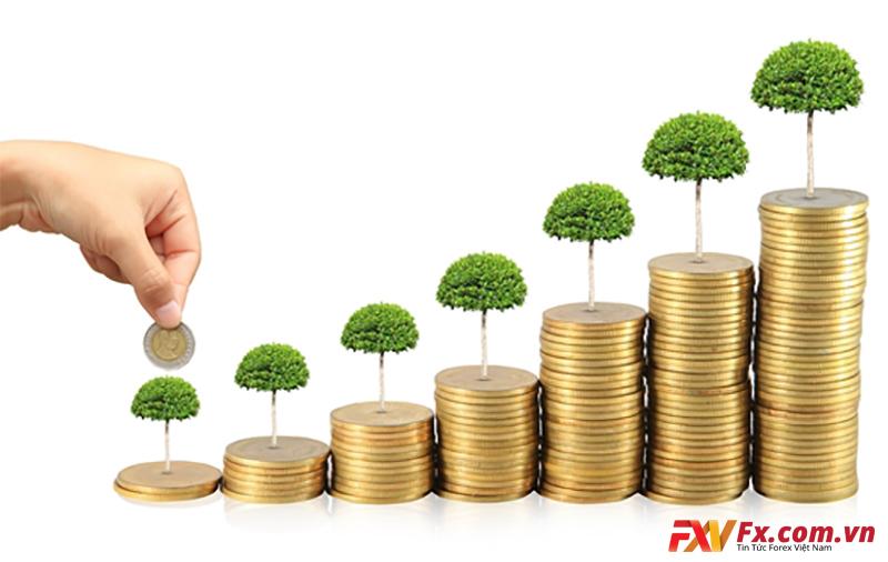 Tại sao nhiều người lại có ý định kinh doanh tài chính