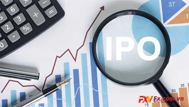 Những nguy hiểm khi công ty IPO là gì?