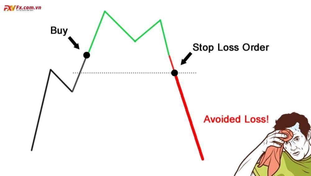 Cách đặt điểm dừng lỗ trong Forex