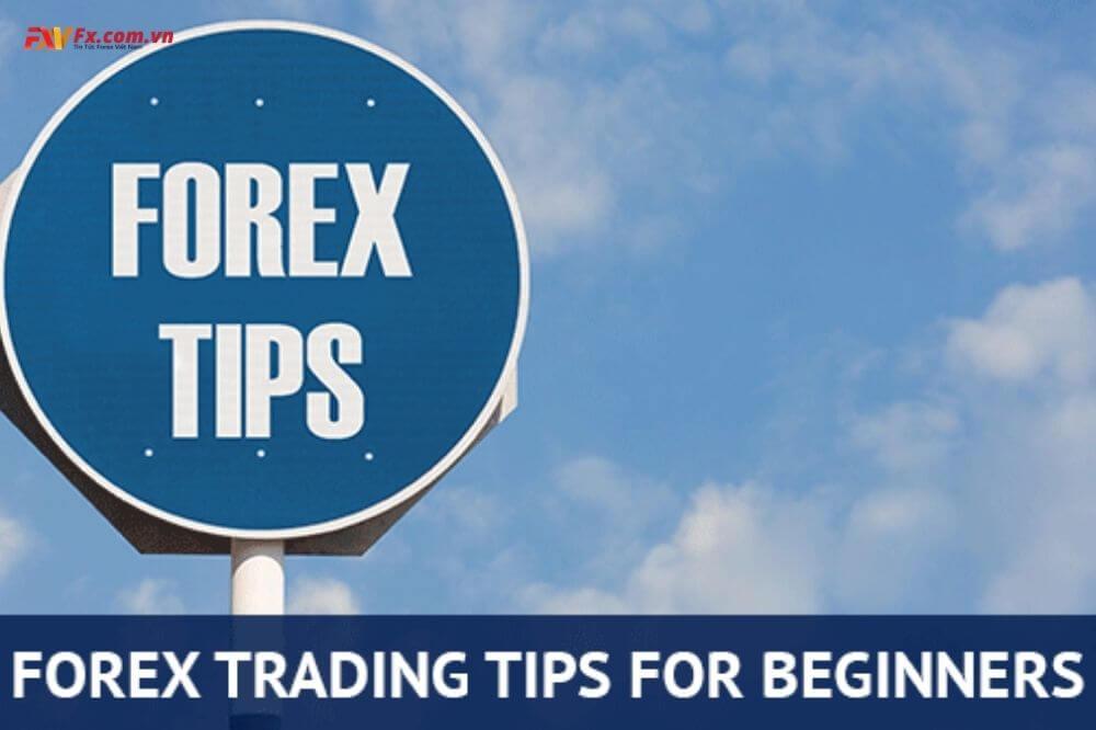 Mẹo giao dịch Forex cho người mới