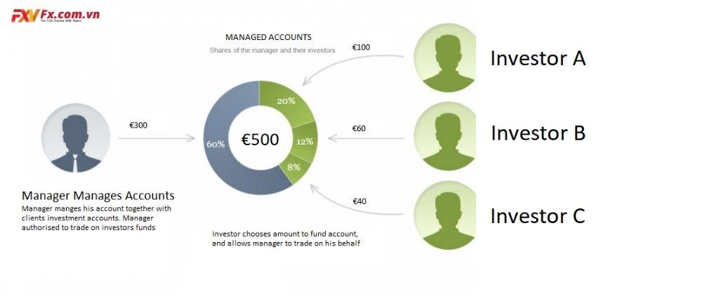 Tài khoản quản lý Forex là gì?