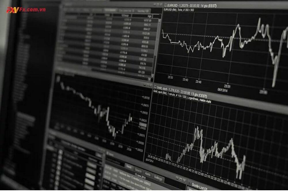 Tìm hiểu về các loại tiền tệ bạn giao dịch