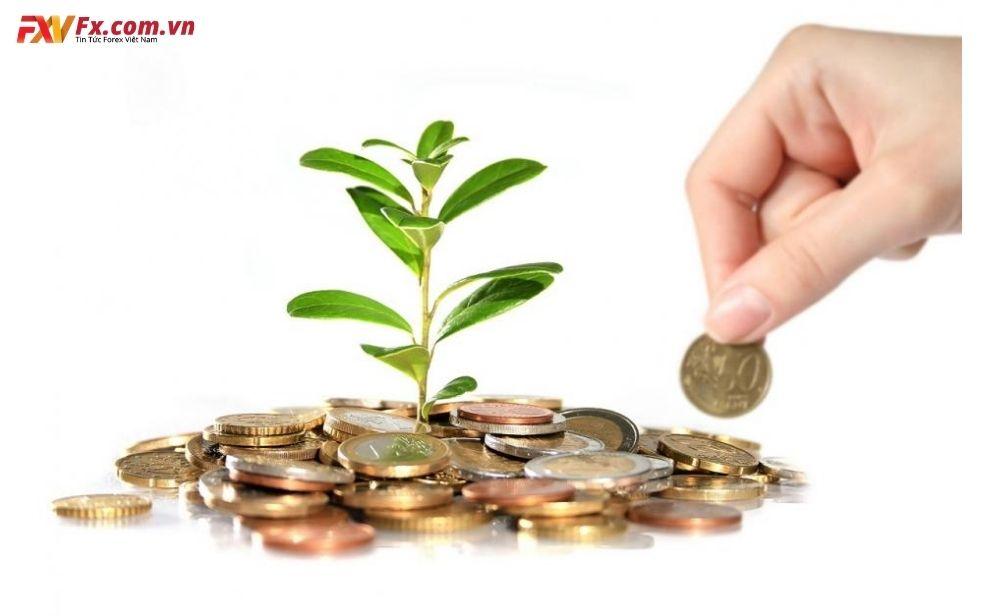Đầu tư chứng khoán bao nhiêu tiền để thành công