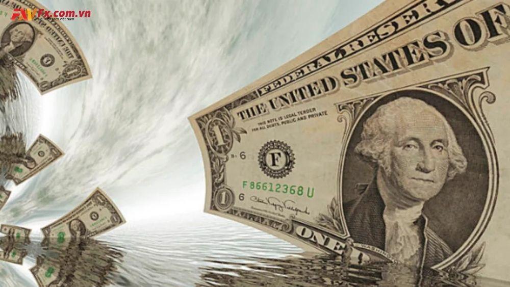 Tình hình chung của đồng đô la Mỹ