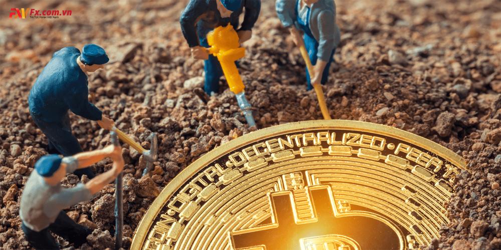 Những công cụ, thiết bị cần thiết để auto đào Bitcoin