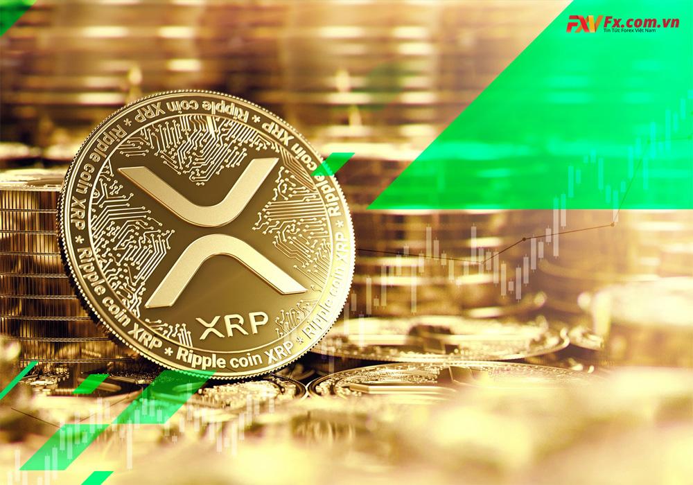 Sự khác biệt giữa XRP và Bitcoin