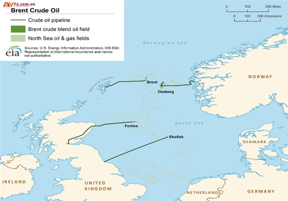 Giá dầu Brent là gì? So sánh giữa Brent và WTI