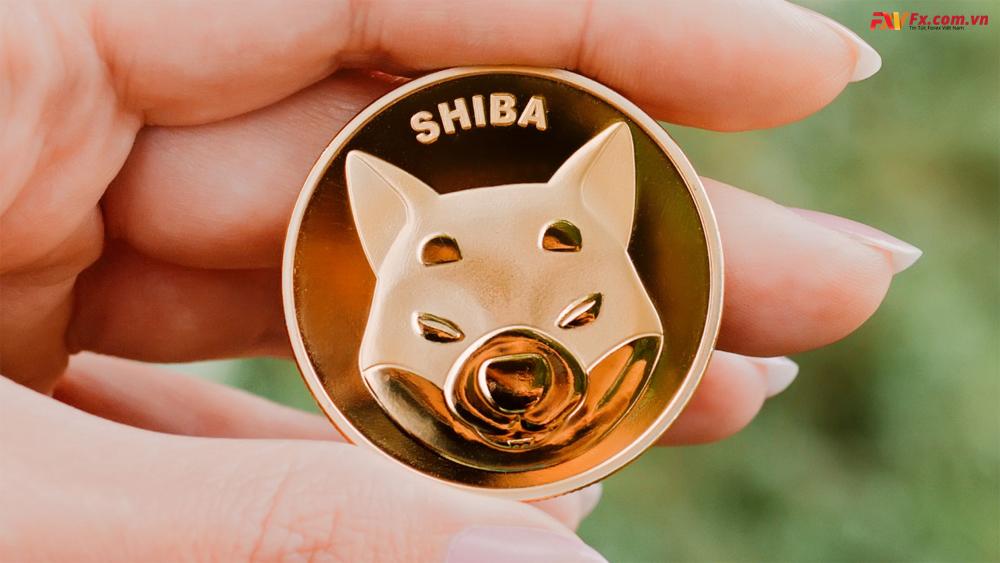 Cách lưu trữ Shiba coin là gì?