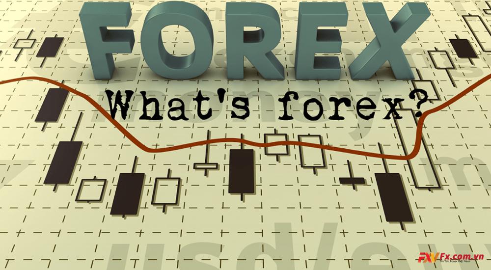 Forex là gì? Lừa đảo trên sàn Forex, tiền ảo
