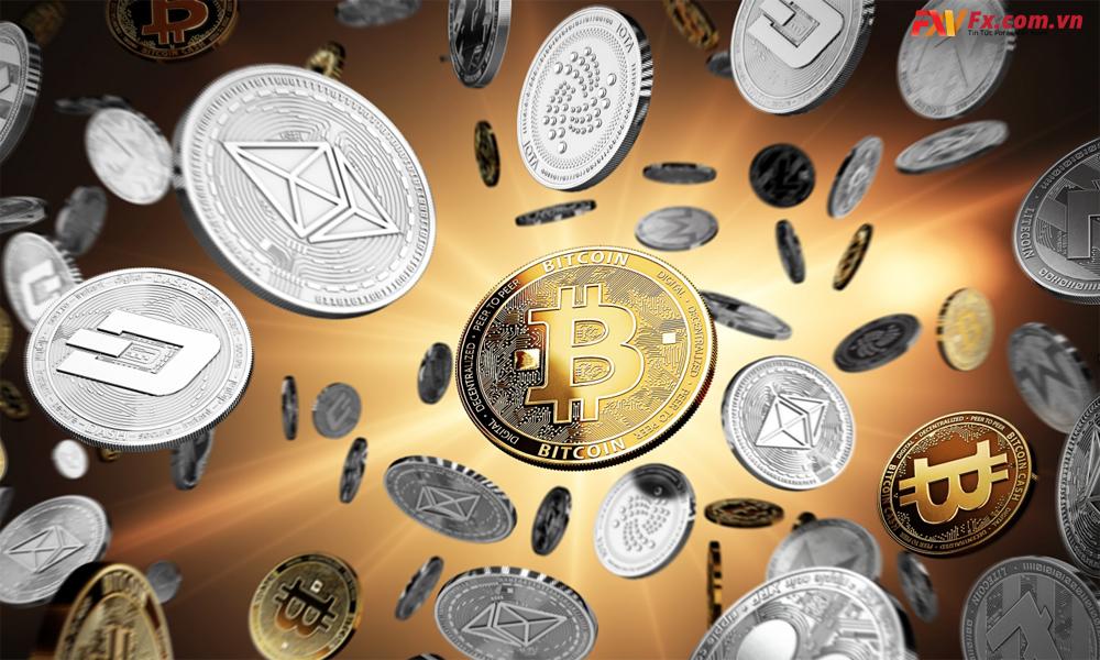 Hướng dẫn cách nhận biết coin rác