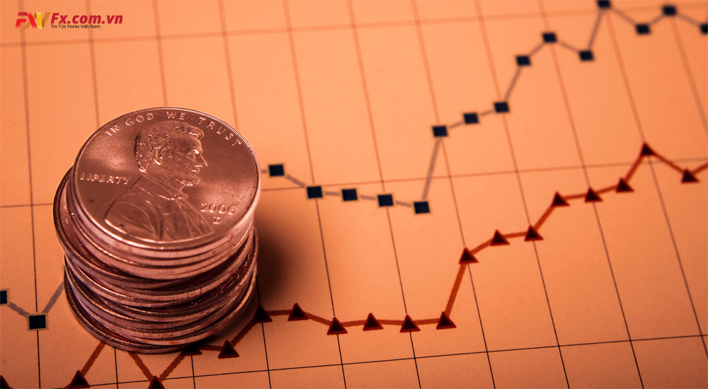 Một số lưu ý khi đầu tư cổ phiếu Penny